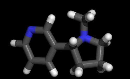 A6240364-Nicotine_molecule-SPL