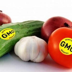 Sig_nej_til_GMO